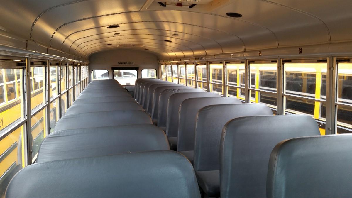 Wonderful School Buses   Call Northfield Lines On 888 670 8068 (Toll Free)